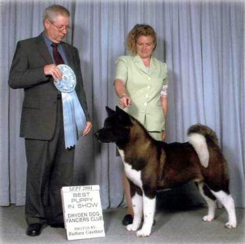 AKC/CAN CH Alder's Just Cause